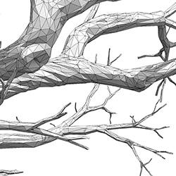 tree_thum