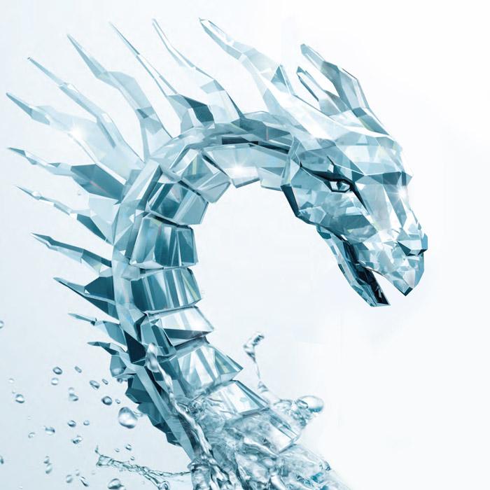 vawter_dragon_crop_b_ferdi_disko.co.za